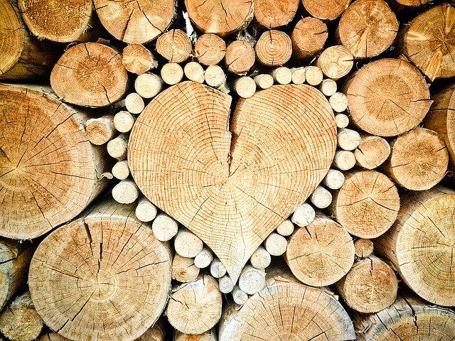 coeur bois